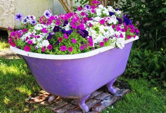 Декоративный цветник из старой раковины