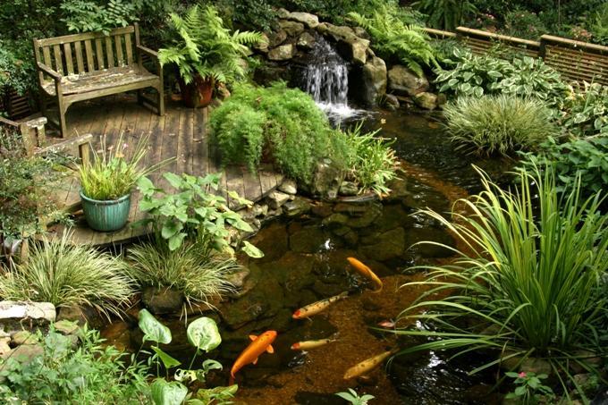 Водоем в ландшафтном дизайне с рыбками