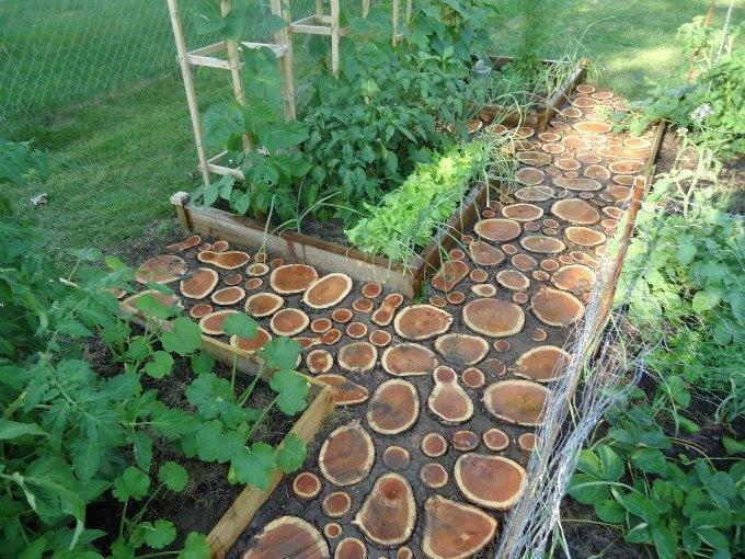 Деревянные спилы для садовых дорожек