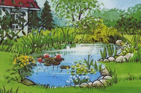 Садовый пруд. Наполнение