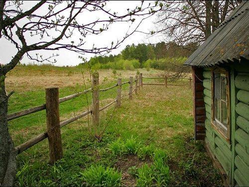 Дом в деревне возле леса