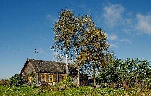 Оценка местности при покупке дома в деревне