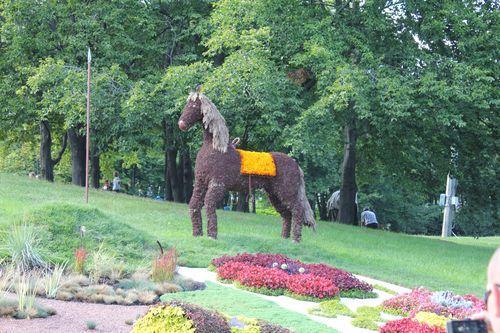 Конь из цветов