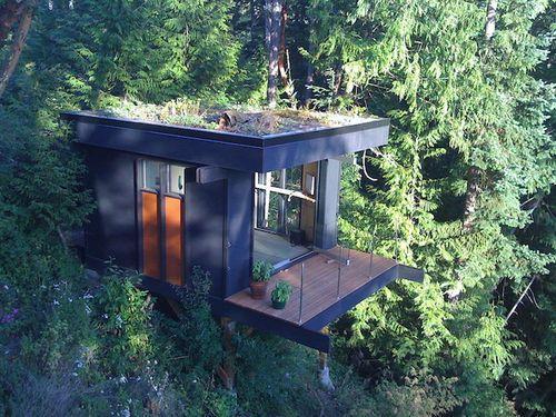 Кубический офис в лесу