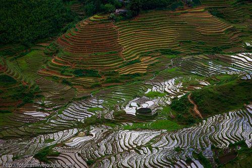 Ступенчатые огороды Вьетнама