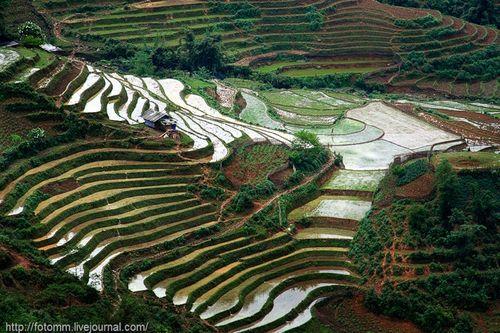 Ландшафт Северного Вьетнама