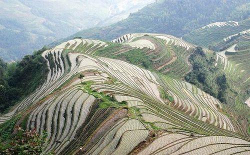 Террасы - объединения природного и штучного ландшафта