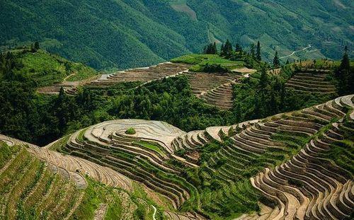 Горный ландшафт и рисовых террас