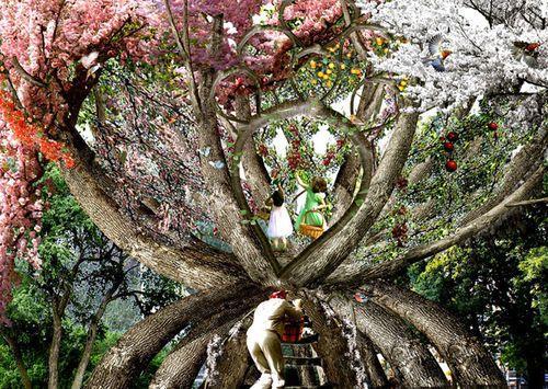 Беседка с деревьев