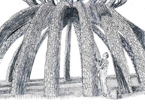 деревья образуют беседку