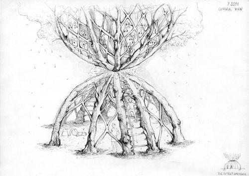 деревья для беседки