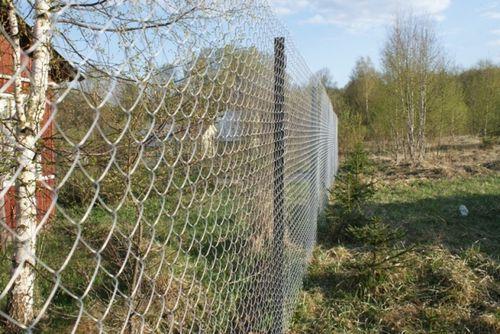 забор из сетки-рабицы на огороде