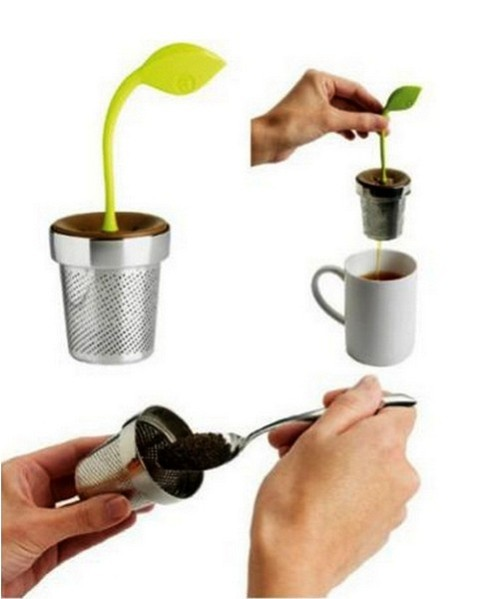 Растение-заварник