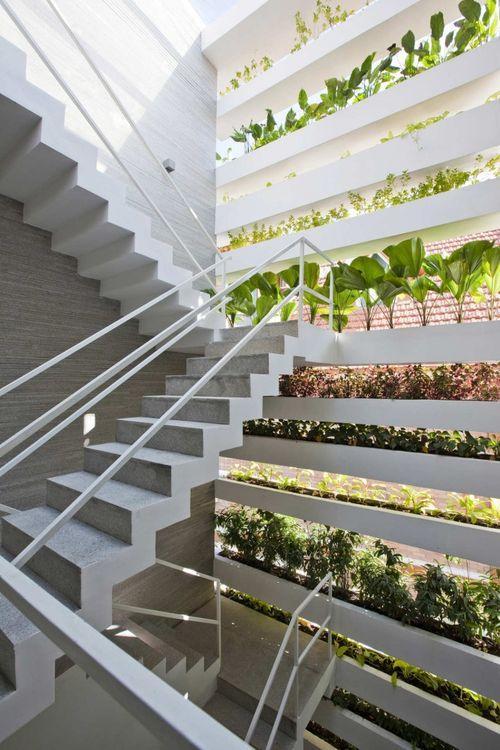 Балконы с зеленью