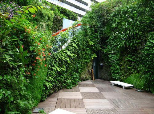 Вертикальные сады в Париже