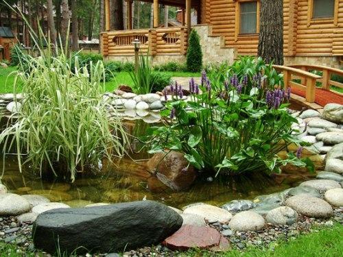 водоем на участке возле деревянного дома