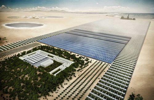 Sahara Forest Project - штучный оазис