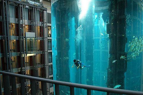 Самый большой аквариум Aquadom