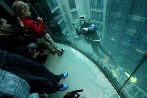 Aquadom – огромный аквариум в холле Radisson Blu Hotel