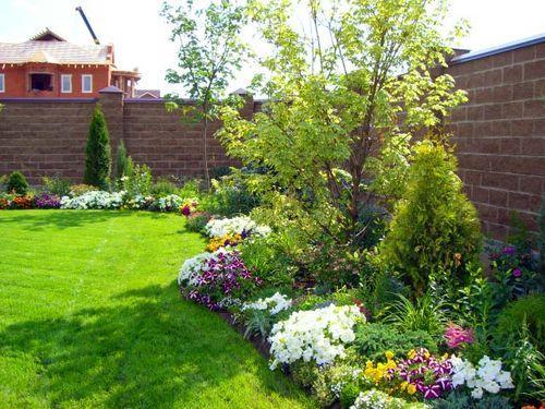Озеленение участка и высадка растений