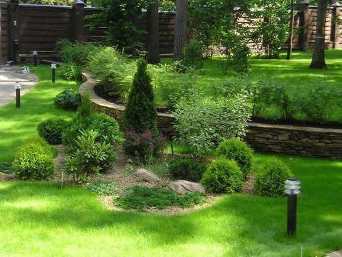 Озеленение участка. Фото