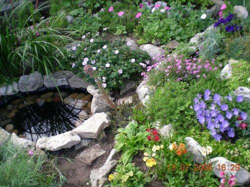 Маленький прудик в саду своими руками
