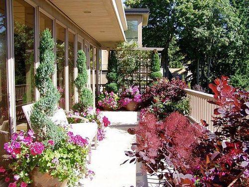 Дизайн балкона и лоджии. Озеленение