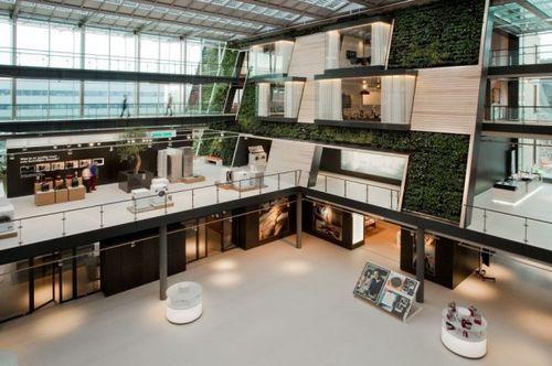 Живые растения в интерьере офиса