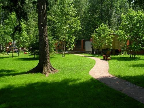 Садовые дорожки, чтобы не топтать газон