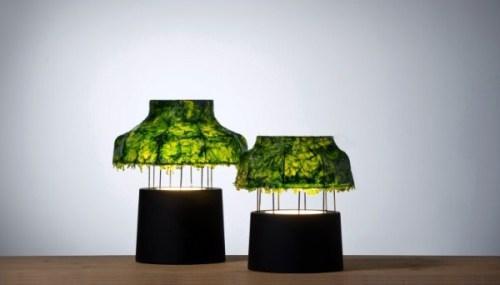 Лампа из морских водорослей. Фото 3