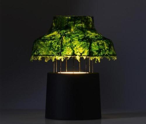Лампа из морских водорослей. Фото 4