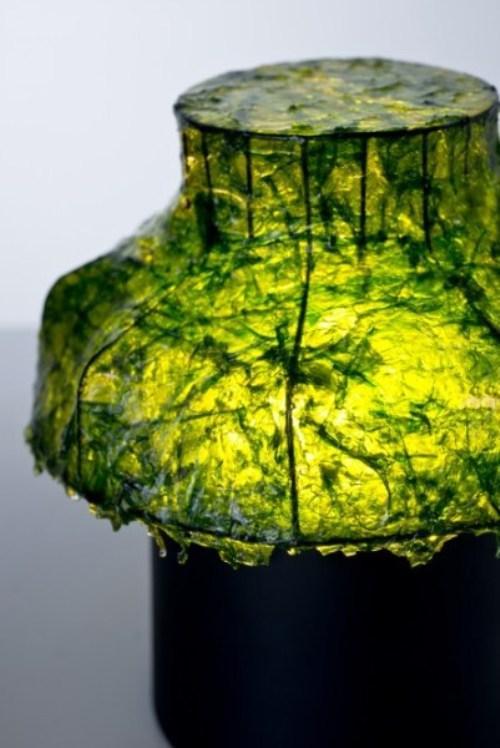 Лампа из морских водорослей. Фото 5