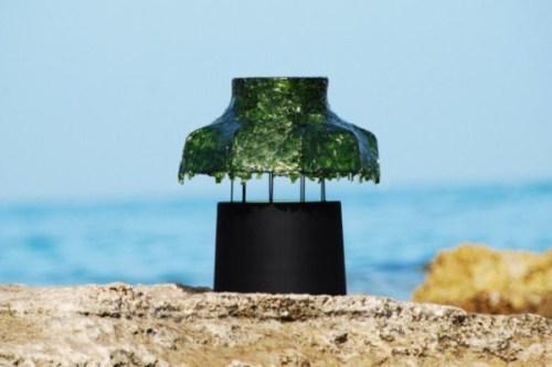 Лампа из морских водорослей