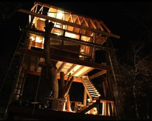 Уникальный коттедж Tom's Treehouse - дом вокруг дерева. Фото 7