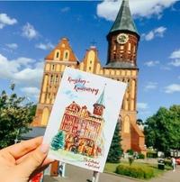 Туры в Калининград на 8 дней
